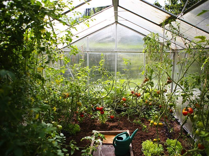 Langarth Garden village section 01 1