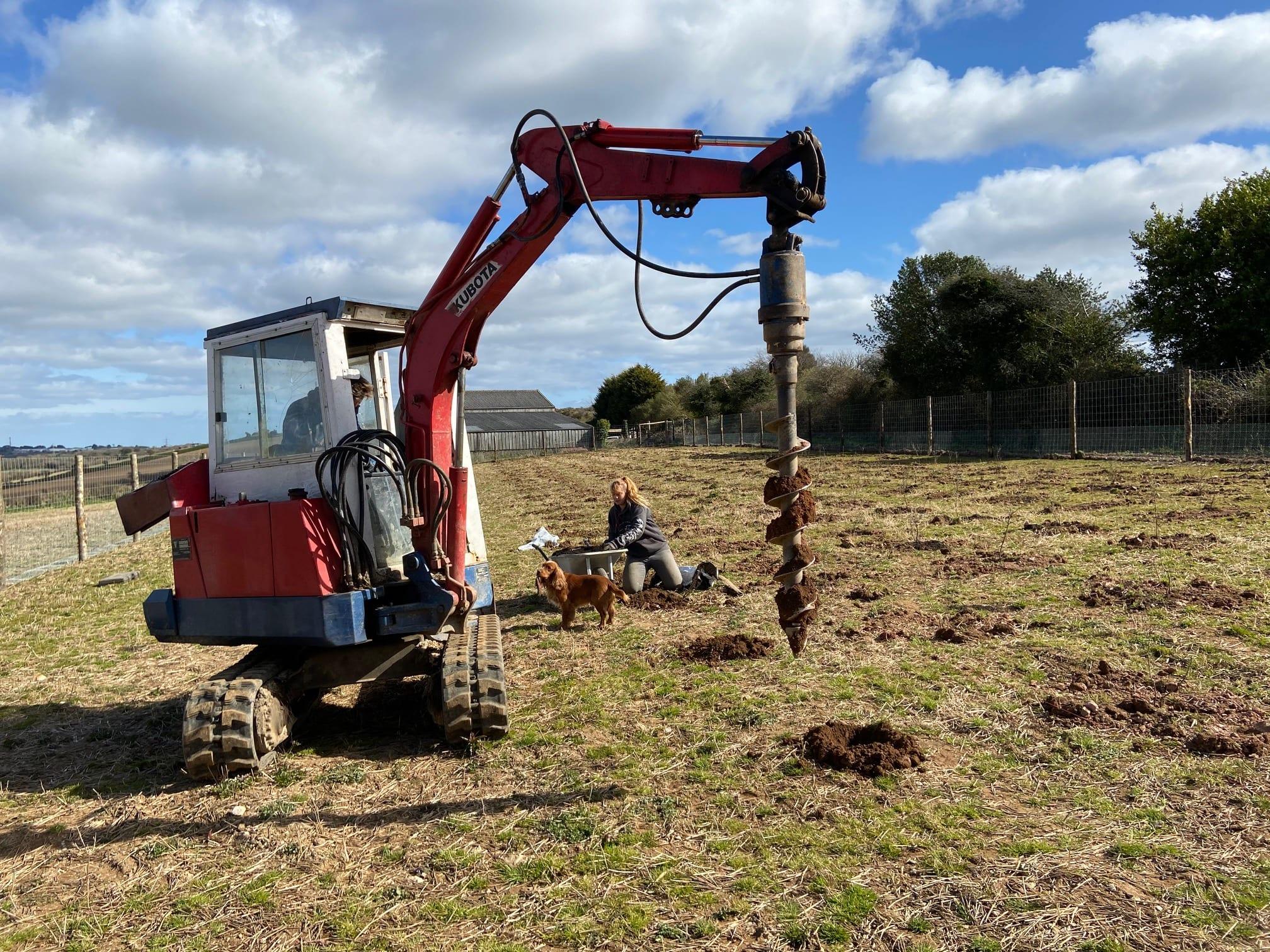 Creating a tree nursery at Langarth Garden Village